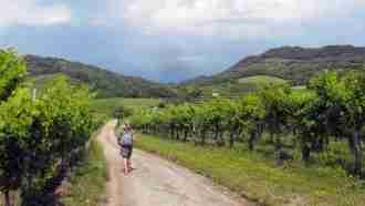 Across Western Slovenia: Postojna to Trieste 23