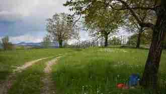 Across Western Slovenia: Postojna to Trieste 9