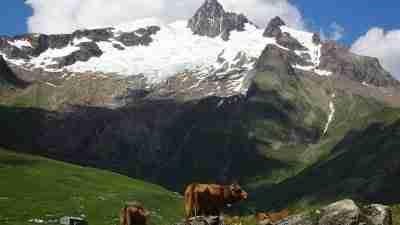 Tour du Mont Blanc from Martigny in Comfort 17