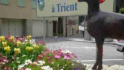 Tour du Mont Blanc from Martigny in Comfort 23