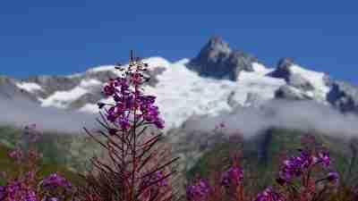Tour du Mont Blanc from Martigny in Comfort 41