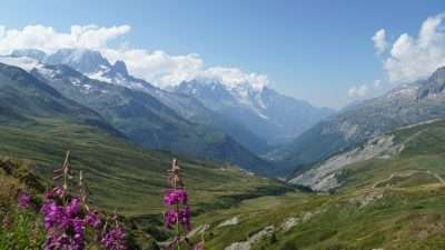 Tour du Mont Blanc from Martigny in Comfort 54