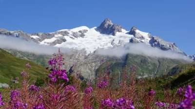Tour du Mont Blanc from Martigny in Comfort 81