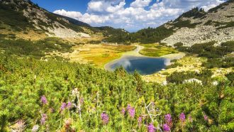Bulgarian Alps: Rila and Pirin 1
