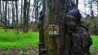 Bohemian paradise self-guided tour Czech Republic trail marks