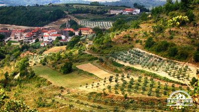 Trails and Wines of Istria 32