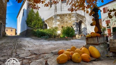 Trails and Wines of Istria 25