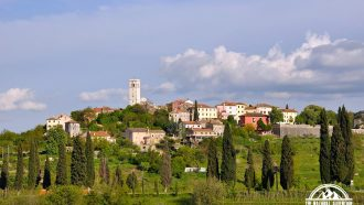 Trails and Wines of Istria 24
