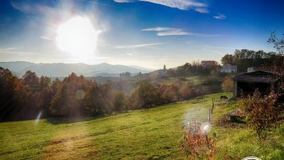 Trails and Wines of Istria 20