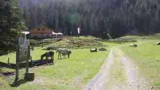 Across Tyrol: Innsbruck to Sterzing 34