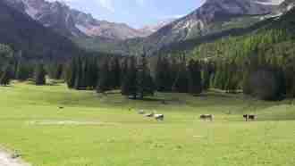 Across Tyrol: Innsbruck to Sterzing 33