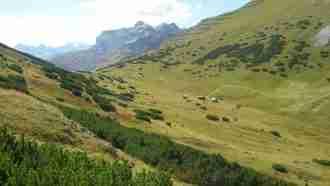 Across Tyrol: Innsbruck to Sterzing 31
