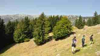 The Four Mountains of Transylvania 1