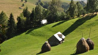 Piatra Craiului National Park - Magura mountain village