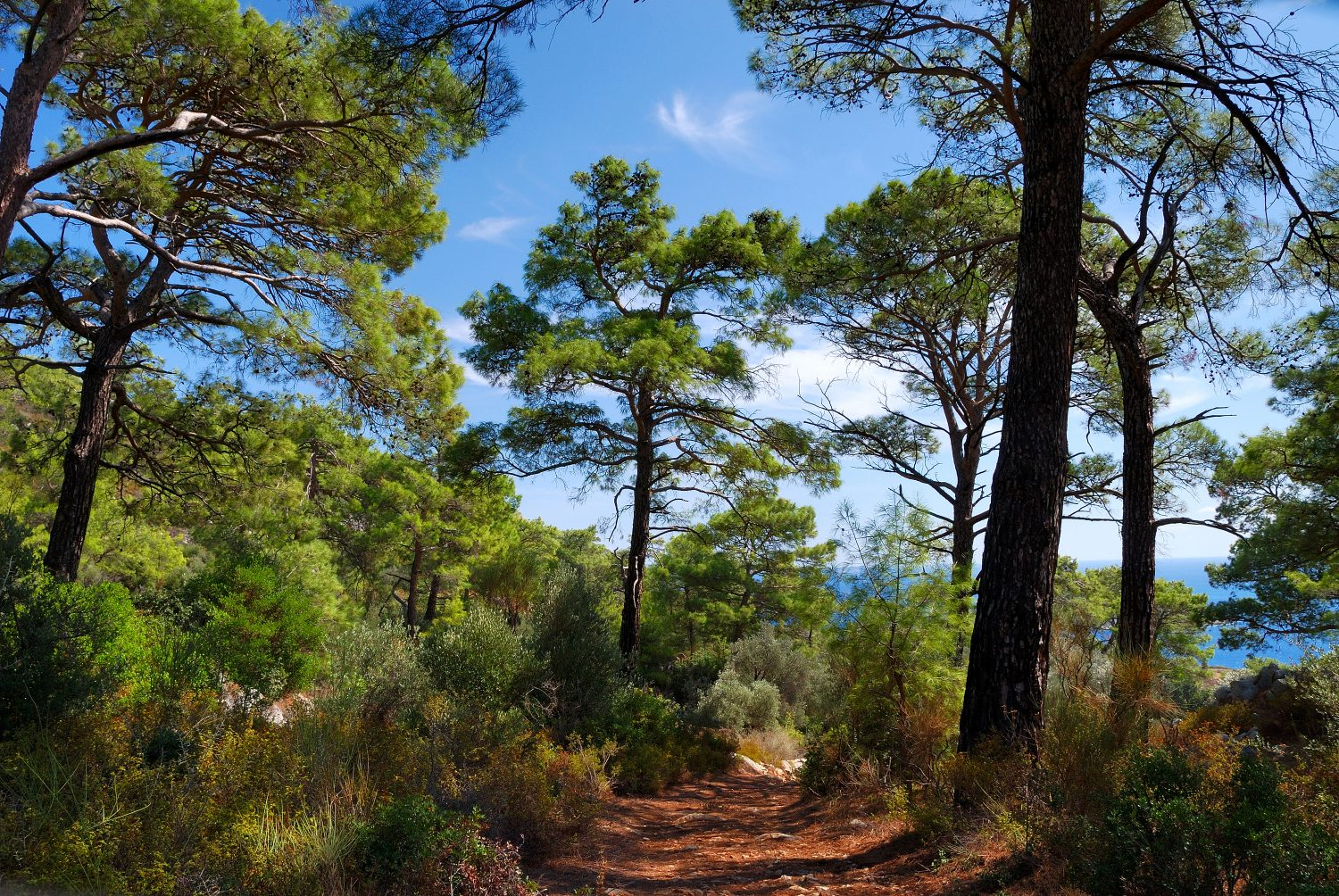 Turkey Walking Holidays, The Lycian Way East