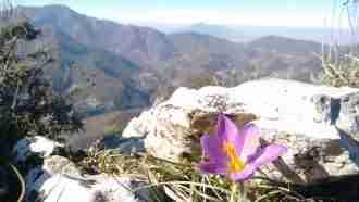 Alta Via: Amalfi and Sorrento Coast to Coast 38