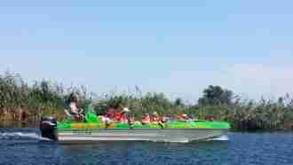 Danube Delta(2)