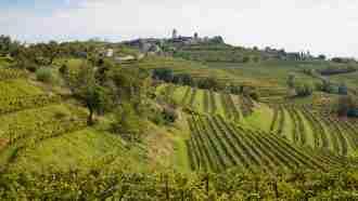 Alpe-Adria Trail: Kranjska Gora to Cividale del Friuli 10