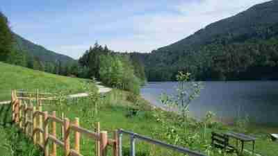 Salzburg Lake District 7