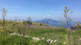 Alta Via: Amalfi and Sorrento Coast to Coast 17