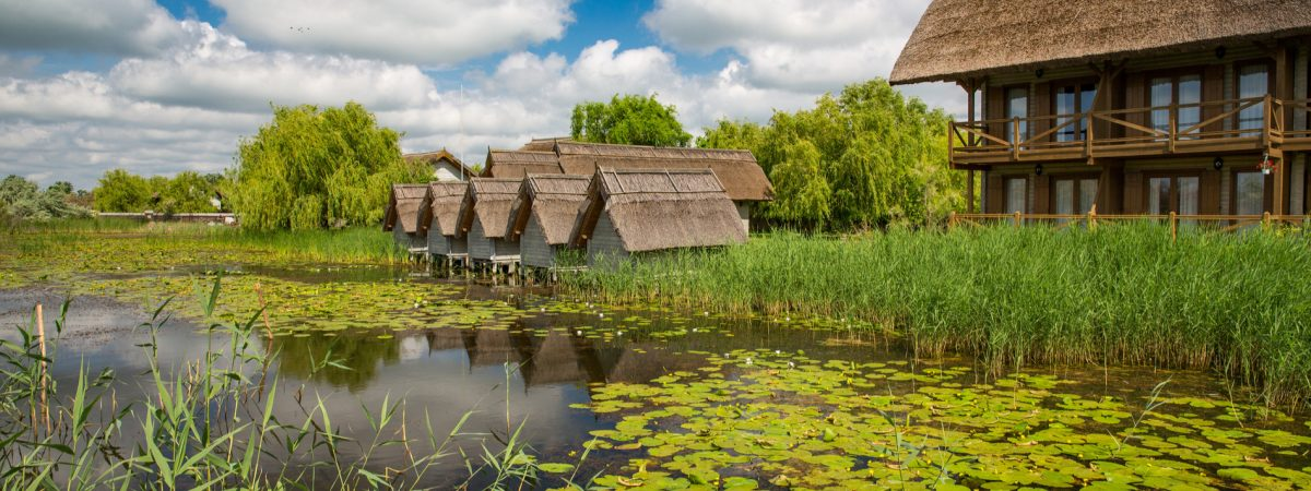 Carpathian Mountains and the Danube Delta 15