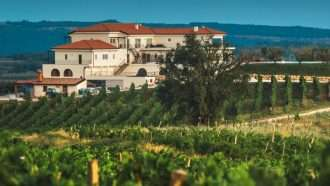 Trails and Wines of Istria 57