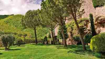 Alta Via: Amalfi and Sorrento Coast to Coast 50