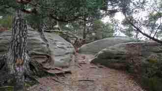 Trekking the Malerweg Trail 22
