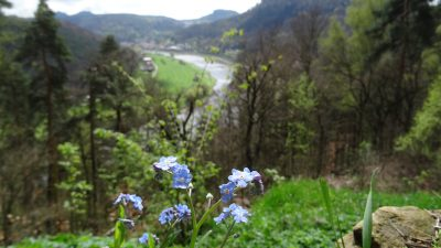 Trekking the Malerweg Trail 13