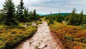 Krkonose: Giant Mountains of Czechia