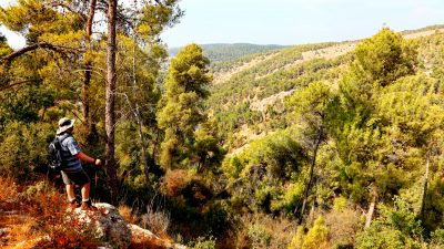 Judean Hills to Jerusalem, israel walking holidays, walking holidays in israel, walking tours israel