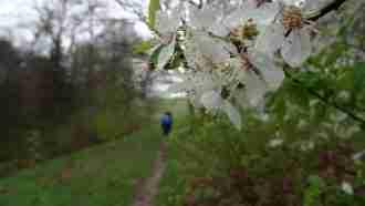 Trekking the Malerweg Trail 6