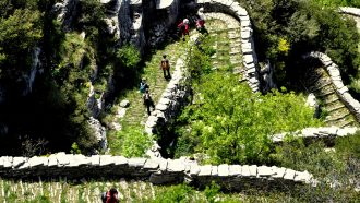 Vikos Gorge and the High Trails of Pindos 15
