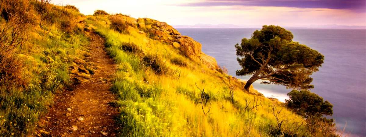 Pyrenees Coastal Trails: Cadaqués to Collioure 19