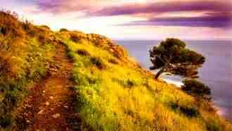 Pyrenees Coastal Trails: Cadaqués to Collioure
