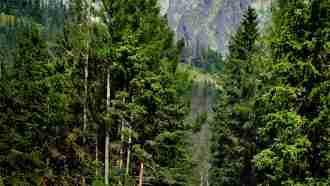 Slovakian Alps: High Tatras 127