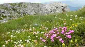Via Dinarica in Bosnia and Herzegovina  The Natural Adventure Company 52
