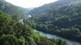 Ribeira Sacra: The Gorges and Vineyards of Galicia 2
