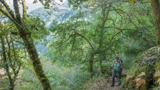 Ribeira Sacra: The Gorges and Vineyards of Galicia 3