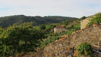 Ribeira Sacra: The Gorges and Vineyards of Galicia 23