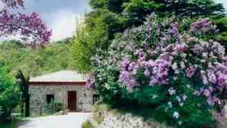 Sierra de Guadarrama: The Mountains of Madrid and Segovia 16