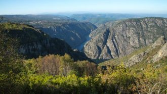 Ribeira Sacra: The Gorges and Vineyards of Galicia 9