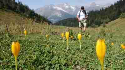 Mestia and the Trails of Svaneti 19