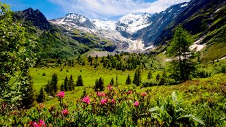 Tour du Mont Blanc Highlights in Comfort, walking holidays in Swit`erland