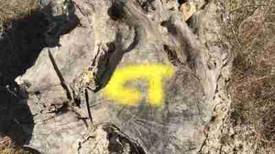 Corfu Trail Complete 10