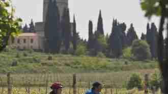 Piedmont Wine Country on Wheels 90