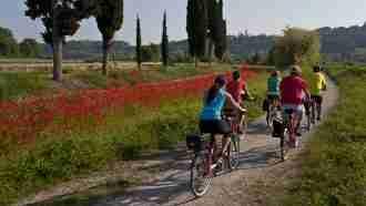 Piedmont Wine Country on Wheels 73