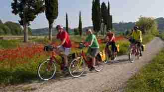 Piedmont Wine Country on Wheels 68