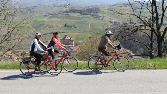 Piedmont Wine Country on Wheels 50