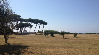 Cycling the Tuscany Coast: Pisa to Elba 26